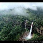 noni falls_large.jpg