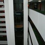 Les ascenseurs tres jolis