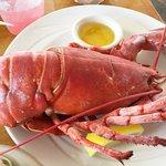 Arundel Wharf Restaurant Foto