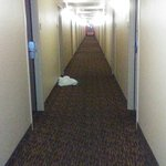 Foto de Extended Stay America - Los Angeles - Long Beach Airport