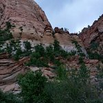 Zion Park. Pictures just don't do it justice.