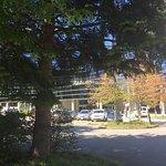 Foto de Radisson Hotel Vancouver Airport