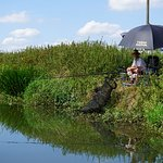 fisherman on the bank