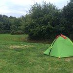 Foto de Apelvikens Camping