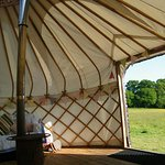 The view from a yurt at Cuckoo Down Farm