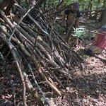 Building a primitive shelter