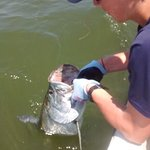 Tarpon trips are available starting in April, May, and June.