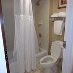 closer view of shower and toilet room, which are separate from vanity sink and mirror