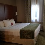 Comfort Suites North Foto