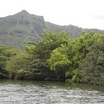 Wailua River Cruise