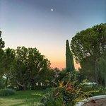 Sunset garden views