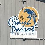 CrayZ Parrot