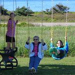 swingset -- fun for young and old alike (This woman is 85!)