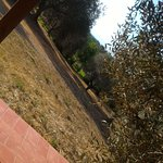 Agriturismo Serignano alle Rocchette