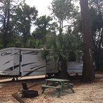 Campsite 136