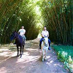 Horse riding in the Puerto Valle grounds