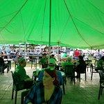 Irish Celtic festival at Firehouse Winery