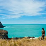 At the Akaroa head marine reserve and Lighthouse scenic reserve, enjoy the endless pacific ocean