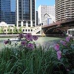 Foto di Chicago's Finest Tours