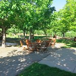 Shady outdoor seating
