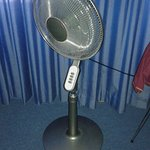 Fan in room and excellent shower