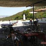 IMG_20160826_143155_large.jpg