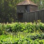 Gemüse und Getreidegarten am Fort