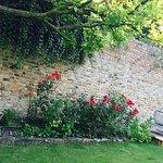 Jardin privatif entre la réception et les chambres