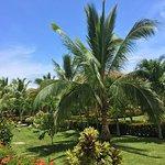 Foto de La Ensenada Beach Resort and Convention Center