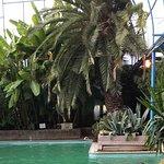 Photo of Indian Springs Resort