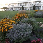 Photo de Best Western Plus Kelowna Hotel & Suites