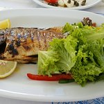 Bild från Fratzeskos Fish Tavern