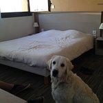 Foto de All Suites Appart Hotel Dunkerque