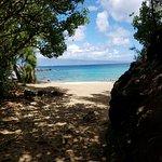 Honolua Bay Foto