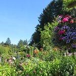 Jardin botanique de classe mondiale.