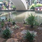 Photo de River Walk