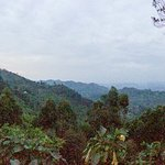 Imagen de Nkuringo Bwindi Gorilla Lodge