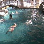piscine semi couverte, accès à l'extérieur en passant sous le petit pont