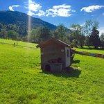 Sommer Rodelbahn - Freizeitspaß für die ganze Familie ✌🏽️🗾