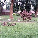 Gardens, open spaces