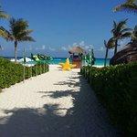 Sandos Playacar Beach Resort Photo