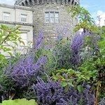 Nice gardens outside the castle