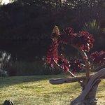 Birds Ferry Lodge Foto