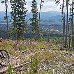 Sidewinder XC Trail