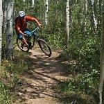 Vista XC Trail