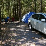 Paradise Valley Campground Foto