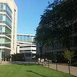 Massachusetts Institute of Technology (MIT) Foto