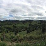 Foto de Mungalli Creek Dairy Farm