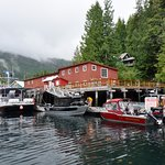 Telegraph Cove from the harbour