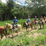 Riding horses in the excursion